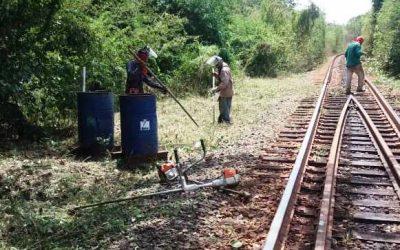 Pico y Poda 2021 Ferrominera asegura condiciones de las vías férreas para transporte de mineral